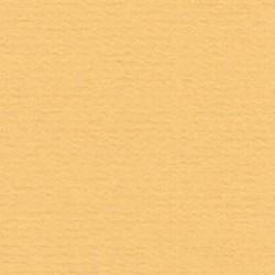 Papicolor Karton a4 Caramel 026