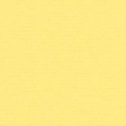 Papicolor Karton a4 Narcisgeel 028