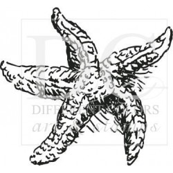 Different Colors S00107 Starfish