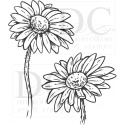 Different Colors S00585 - SU00802 Flower Daisy