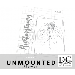 Different Colors SU00731 Drawing Flower (unmounted)