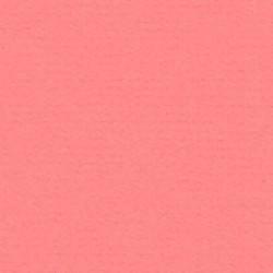 Papicolor Karton a4 Roze 15
