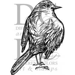 Different Colors S00361 Bird Joan