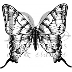 Different Colors S00414 Butterfly An
