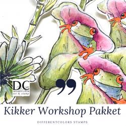 100. K  Workshoppakket Kikker