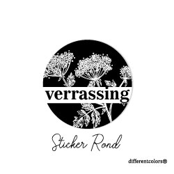 Nr 37. Sticker Verrassing