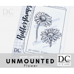 Different Colors SU00802 Daisy (unmounted)