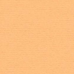 Papicolor Karton a4 Mango 40