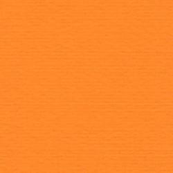 Papicolor Karton a4 Oranje 11